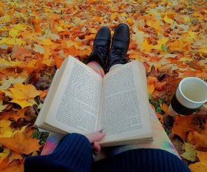 book, fall, and autumn image