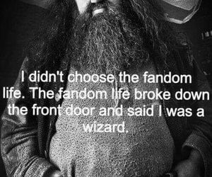 fandom, harry potter, and hagrid image