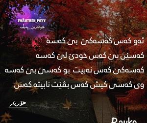 kurdish, zaxo, and rayko image