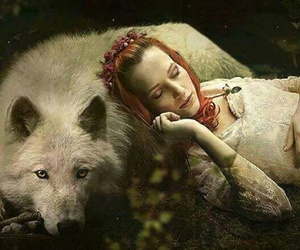 nature, wolf, and fantasie image