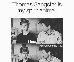 funny and newt image