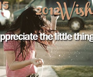 wish, 2012, and little things image