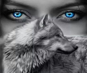 wolf, eyes, and blue image