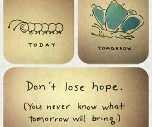 hope, butterfly, and tomorrow image