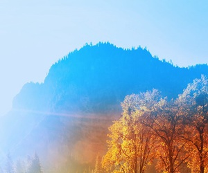 nature, blue and yellow, and sun shining image
