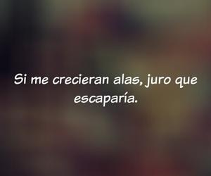 Alas and frases image