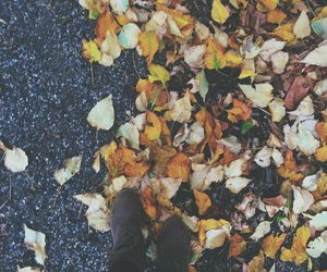 autumn, grunge, and boots image
