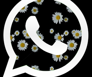 cool, flowers, and icon image