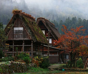 japan and autumn image
