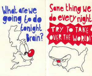 brain and pinky and the brain image