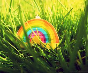 rainbow and grass image