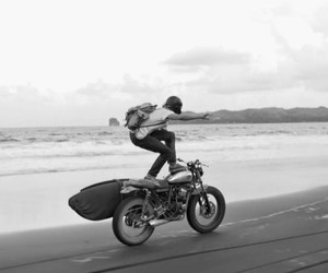 crazy, Paradise Lost, and moto image