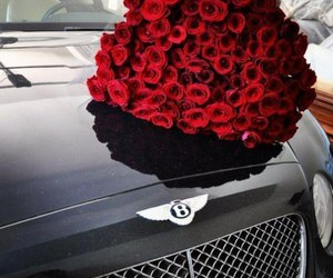car, cars, and roses image