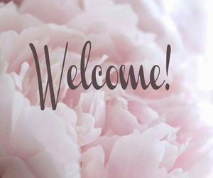 welcome and bienvenue image