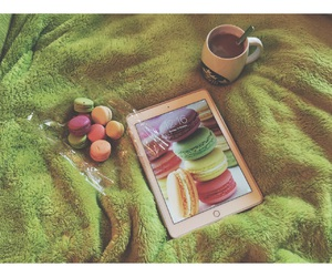 beautiful, coffee, and color image
