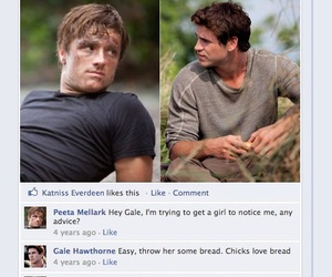 facebook, hunger games, and gale image
