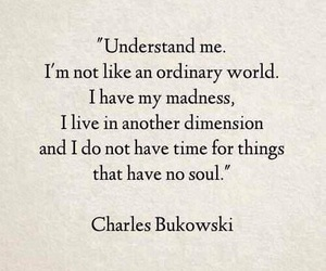 quotes, soul, and madness image