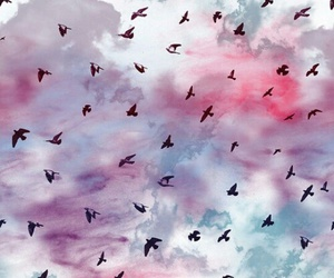 bird, wallpaper, and sky image