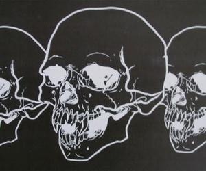 skull, black, and black and white image