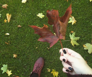 autumn, boots, and coats image