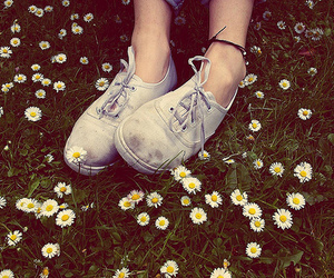 dirty, shoe, and flowers image