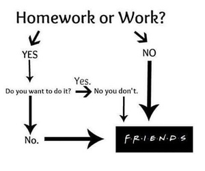 friendship, funny, and homework image