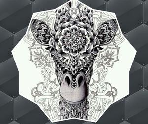 giraffe, mandala, and animal image