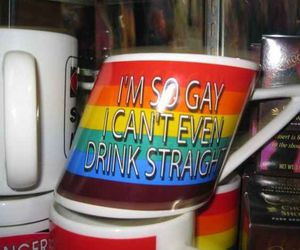gay, funny, and straight image