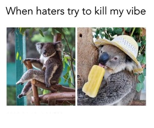 funny, haters, and vibe image