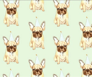 dog, doggy, and wallpaper image