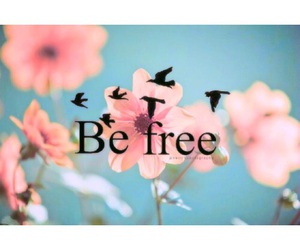birds, flower, and text image