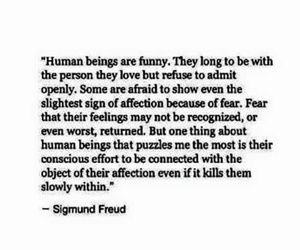 affection, fear, and freud image