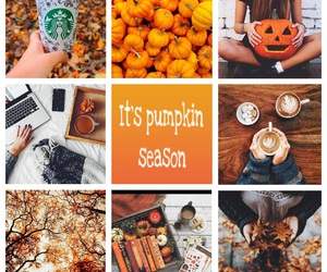 fall, Halloween, and october image