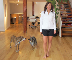 dogs and briana evigan image