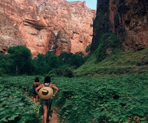 travel, adventure, and green image