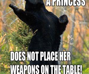 brave, bear, and princess image