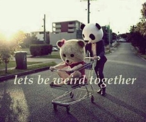 weird, together, and panda image