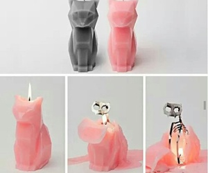 cat and candle image