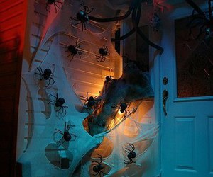 Halloween and decoration image