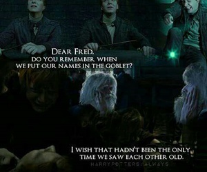 twins, Fred, and george image