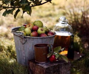 apples, cider, and fall image