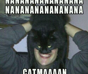 catman, cat, and funny image