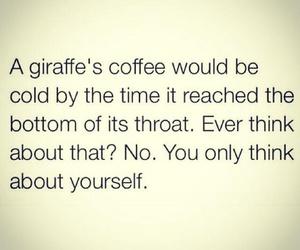 funny, giraffe, and coffee image