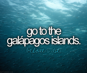before i die, goals, and sea image
