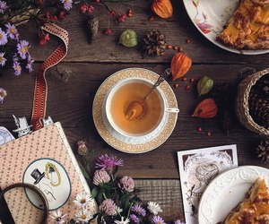 autumn, cup, and flower image