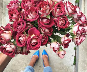rose, fashion, and flowers image