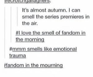 fandom, funny, and spn image