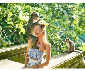monkey and candice swanepoel image