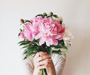 flowers, beautiful, and tumblr image
