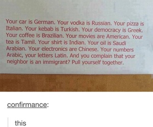 funny, tumblr, and immigrant image